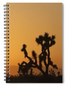Joshua Tree At Sunset Spiral Notebook