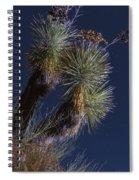 Joshua Tree By Moonlight Spiral Notebook