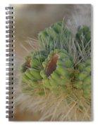 Joshua Tree Cholla Cactus Spiral Notebook