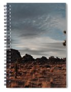 Joshua Tree Hidden Valley Panorama Spiral Notebook