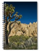 Joshua Tree In Joshua Tree National Park No. 323 Spiral Notebook