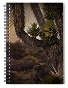 Joshua Tree In Mojave National Preserve Spiral Notebook