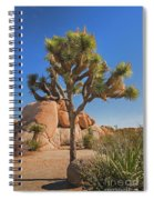 Joshua Tree Spiral Notebook
