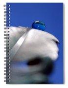 Journeys End Spiral Notebook
