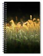 Joy Of Summer - Version 2 Spiral Notebook