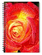 Joyful Rose Spiral Notebook