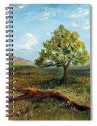 Jubilant Fields Spiral Notebook