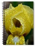 Juicy Lemon Petals Spiral Notebook