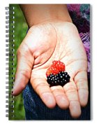 Juicy Spiral Notebook