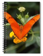 Julia Butterfly 1 Spiral Notebook