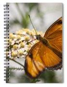 Julia Butterfly Spiral Notebook