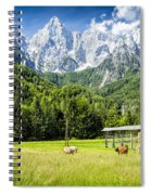 Julian Alps Farm Spiral Notebook