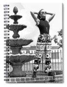 Julieartfountain Spiral Notebook