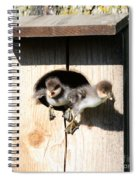 Jump Day Spiral Notebook