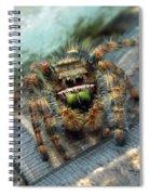 Jumper Spider 3 Spiral Notebook