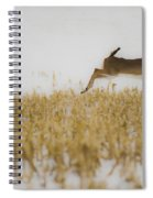 Jumping Doe In Corn Field Spiral Notebook