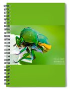 June Bug Fig Beetle Spiral Notebook