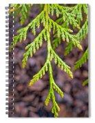 Juniper Leaf Spiral Notebook