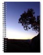 Juniper Tree At Dawn Spiral Notebook