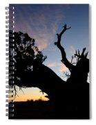 Juniper Tree, Canyonlands National Park Spiral Notebook