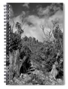 Juniper Trees At The Ghost Ranch Black And White Spiral Notebook