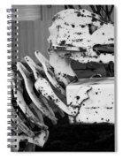 Jurassic Dinosaur Mailbox Spiral Notebook