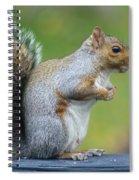Just An Observation Spiral Notebook