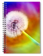 Just Dandy Taste The Rainbow Spiral Notebook