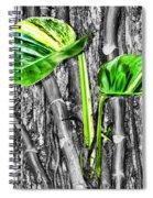 Just Green 2 By Diana Sainz Spiral Notebook