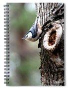 Just Hanging Around Spiral Notebook