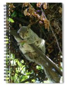 Just Hanging Out Near Home Spiral Notebook