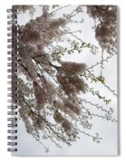 Just Lift Your Head And Enjoy Spring Spiral Notebook