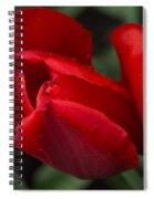 Just One Drop Spiral Notebook