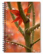 Just One Leaf Spiral Notebook