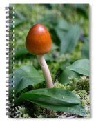 Just One Toadstool Spiral Notebook
