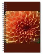 Just Peachy Dahlia Spiral Notebook