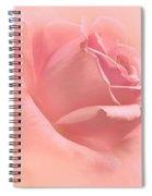 Blush Pink Rose Flower Spiral Notebook
