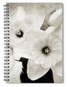 Just Plain Daffy 1 B W - Flora - Spring - Daffodil - Narcissus - Jonquil Spiral Notebook
