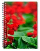 Just Red Spiral Notebook