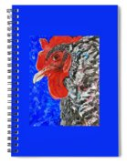 Just Released Jailbird Spiral Notebook