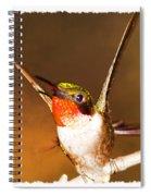 Just Stunning Spiral Notebook
