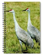 Just The Two Of Us Spiral Notebook
