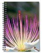 Just Woke Up Spiral Notebook