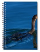 Juvenile Cormorant Swim Spiral Notebook