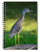 Juvenile Spiral Notebook