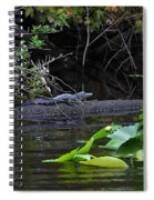 Juvie Gator Spiral Notebook