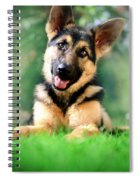 K9 Cute Spiral Notebook