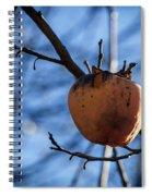 Kaki Spiral Notebook