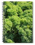Kale Spiral Notebook