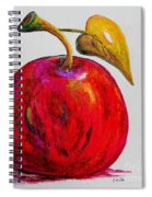 Kaleidoscope Apple -- Or -- Apple For The Teacher  Spiral Notebook